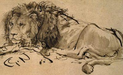 Rembrandt-A-Lion-Lying-Down-207063_detail