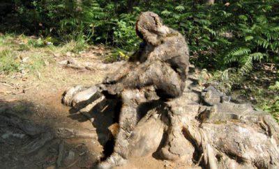 hombre de madera