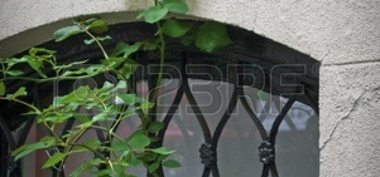 12701570-una-rosa-roja-contra-una-ventana-y-la-pared-en-el-lado-este-de-manhattan