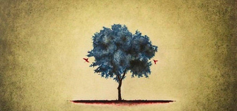 árbol Alonso
