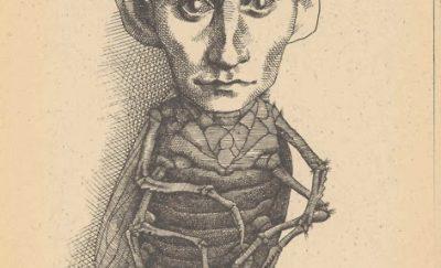 kafka-insecto