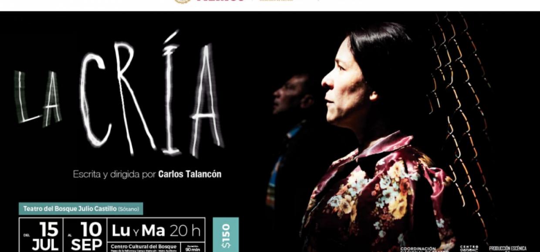 LA-CRIA-cartel-1040×583